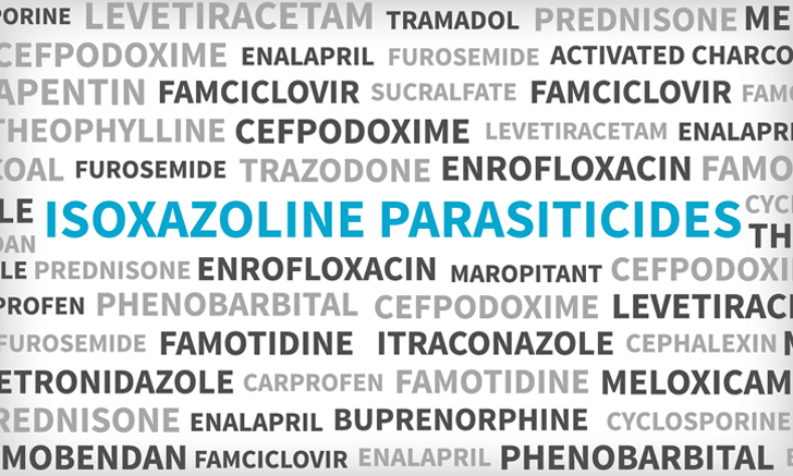 Isoxazoline Flea & Tick Medications
