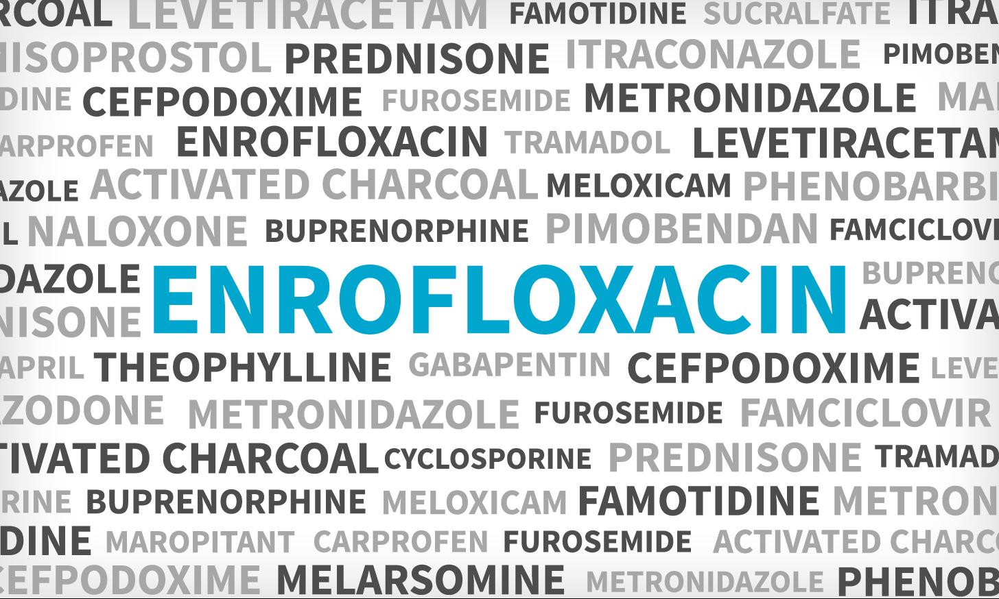 Enrofloxacin (Baytril)