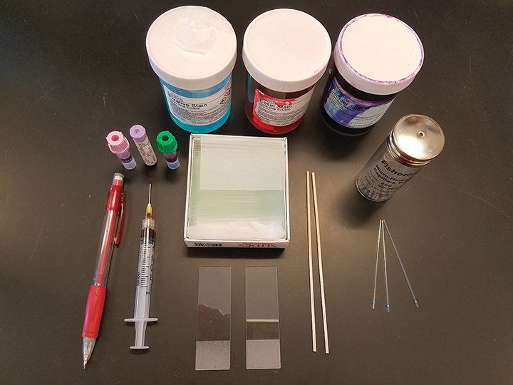The materials needed to create a blood smear include a pencil for labeling, needle hub or blood tubes, glass slides, capillary tubes or wooden applicator sticks, and stains. Figures courtesy of Barbie Papajeski, MS, LVT, RLATG, VTS (Clinical Pathology)