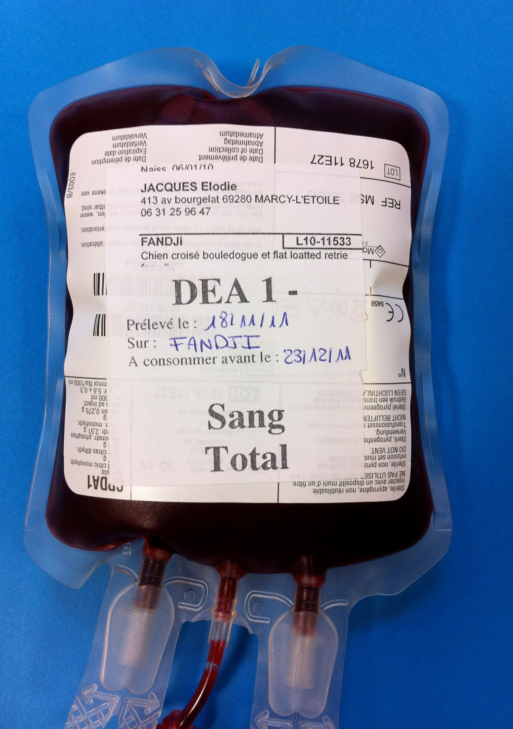 Blood products should be properly identified with blood type, donor's name, collection date, and expiration date.