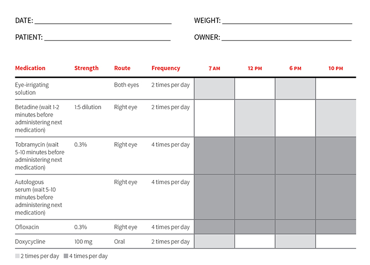 Medication sheet in a tabular format. Shaded boxes indicate the medication was administered at that time.
