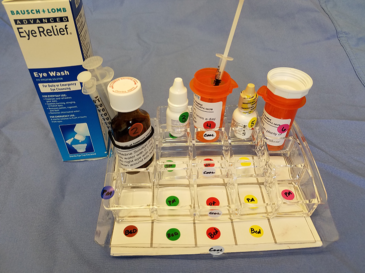 For complex medication regimens, a compartmentalized tray can be labeled with administration times and other information. In addition, medications and compartments can be color-coded to provide visual cues. In this example, each medication has its own column and each row represents a different treatment time. The owner moves the medication to the next labeled compartment in the column after it is administered and moves the medications back to the top row after the final dose of the day.
