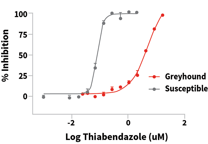 Dose-response curves for the Egg Hatch Assay, an in vitro assay used to measure resistance to the benzimidazole drug class. The large shift to the right indicates that a much higher concentration of the drug was needed to inhibit egg hatching. In this case, the resistance ratio (ie, ratio of the drug concentration required to inhibit the resistant worms as compared with the susceptible worms) was >60-fold.