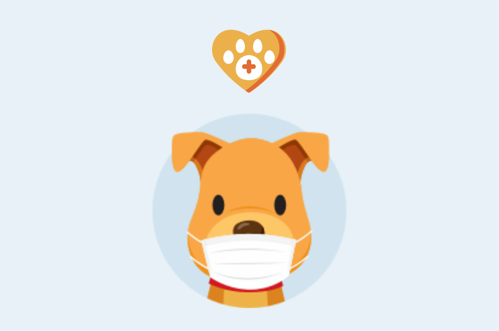 Pawlicy Retriever: Send patients a free tool to compare pet insurance quotes across leading providers.