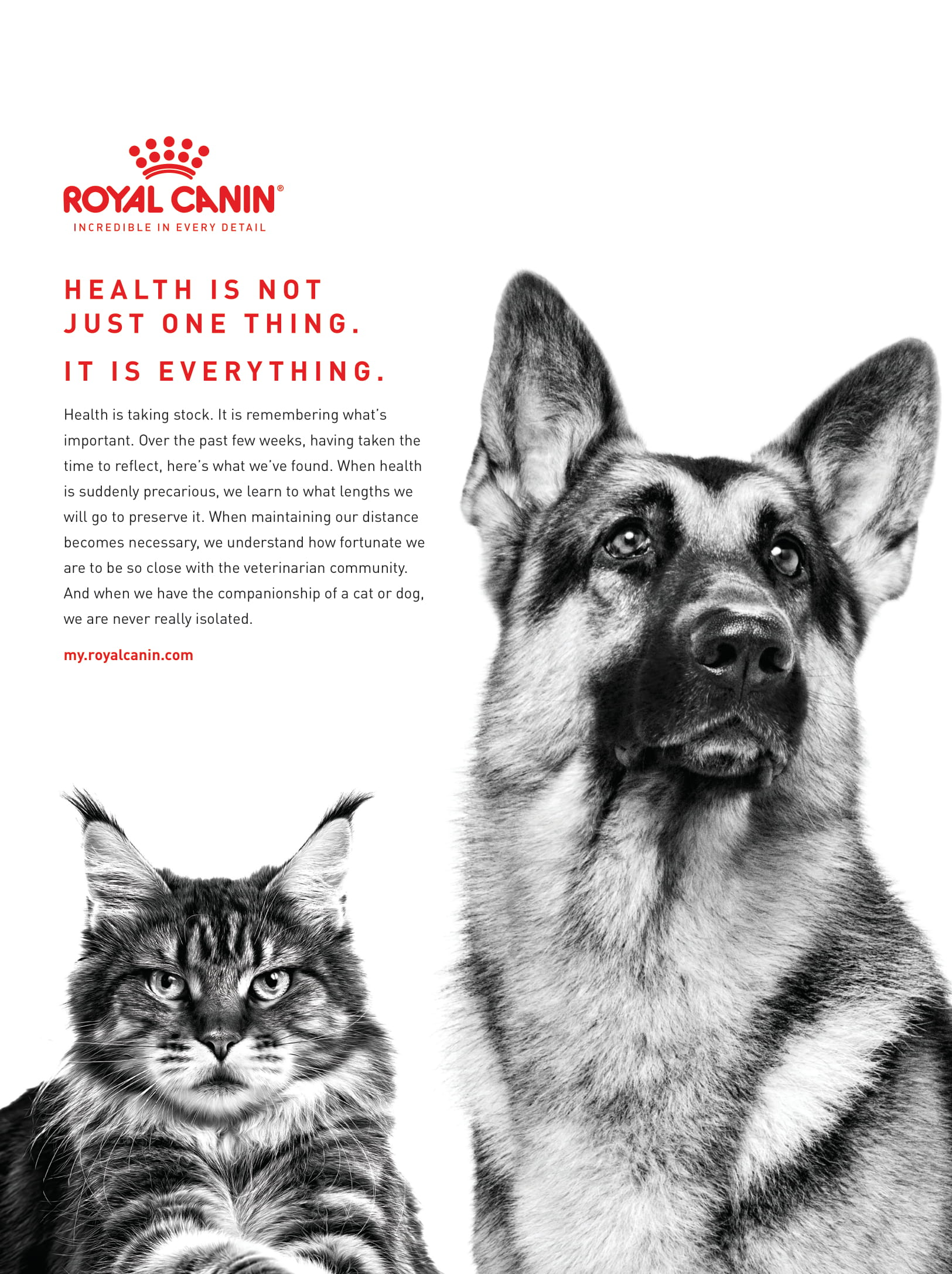 Royal Canin CB June 2020