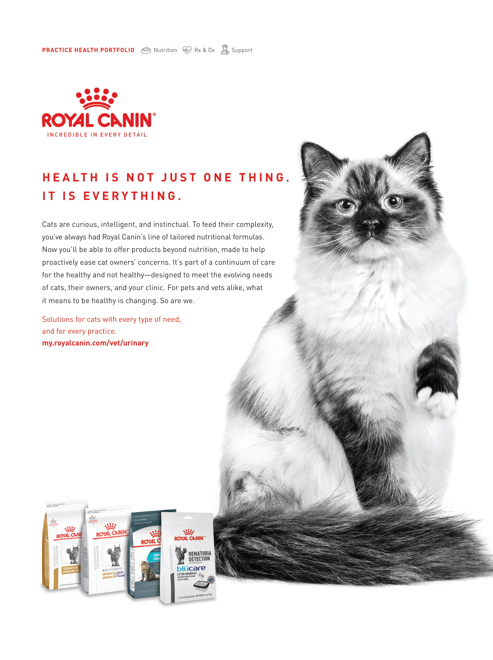 Royal Canin CB Oct 2020