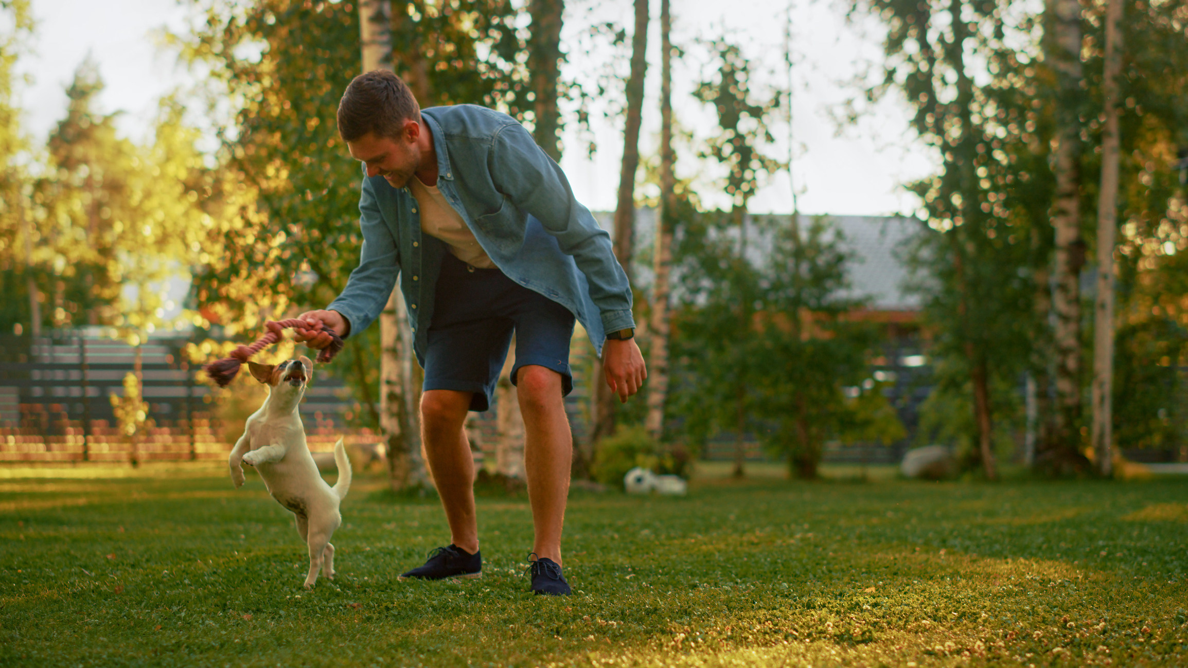 Morris Animal Foundation recieves $100,000 from Merck Animal Health