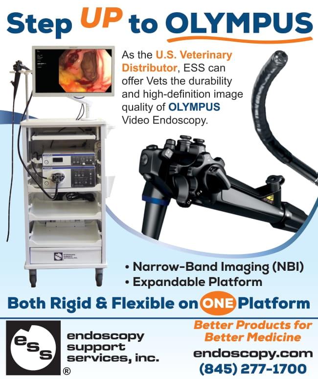 Endoscopy CB JulyAug 2021