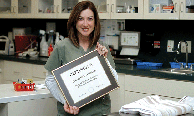 Advanced Certifications for Veterinary Technicians