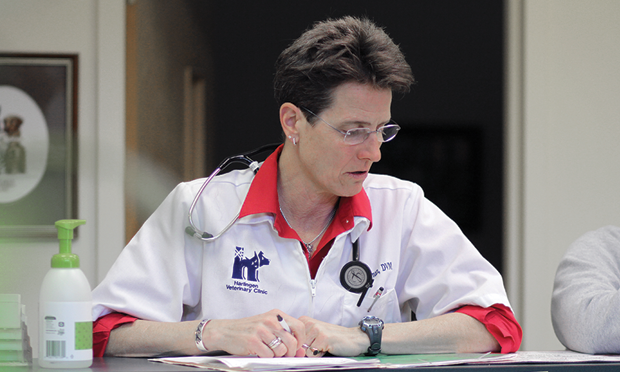 How Will a Majority of Female Veterinarians Impact Practices?