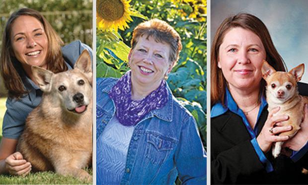 Career Paths for Veterinary Technicians