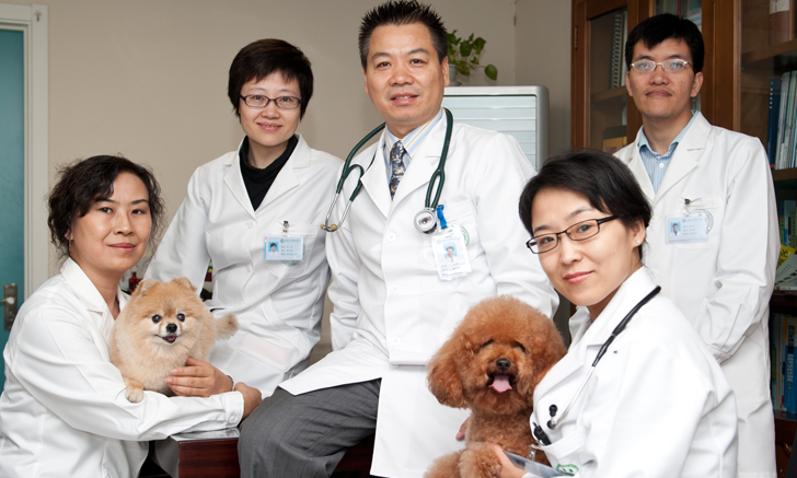 Companion Animal Hospital in Beijing