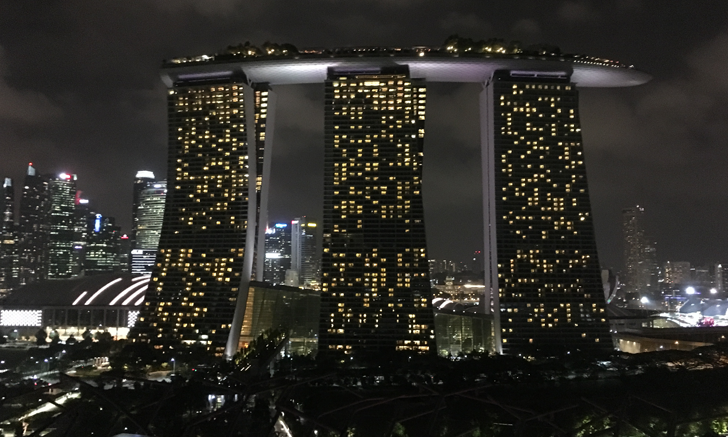 Singapore: Site of the 2018 WSAVA World Congress