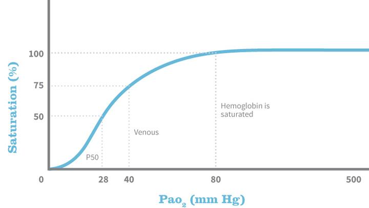 Anesthetic Monitoring: Interpreting the Readings