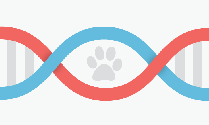 The Future of Veterinary Genetic Testing