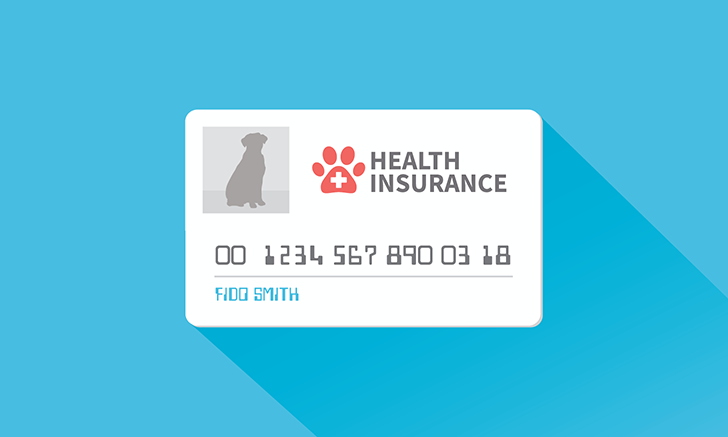 10 Steps to More Insured Pets