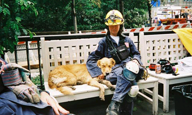 Honoring Heroism with Wellness in 9/11 Search & Rescue Dogs